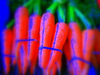 Carrot and PTSD