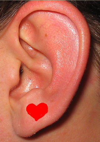 The Loving Ear